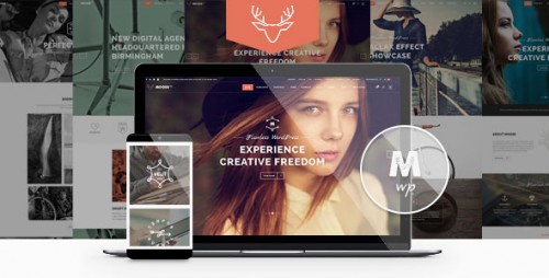 [nulled] Moose v1.7 - Creative Multi-Purpose Theme product pic